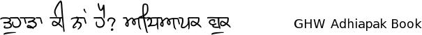 Gurmukhi Hand-Written font Adhiapak free download