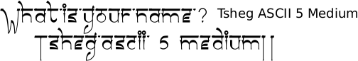 Tsheg ascii 5 Medium font Gurmukhi free download